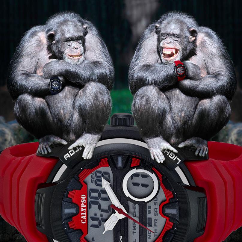 Calypso Monos