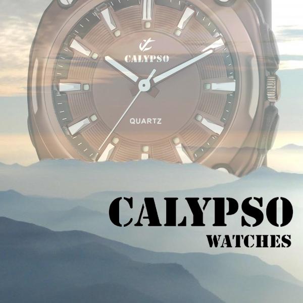 Banner Calypso C copia