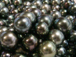 Perlas negras Tahití