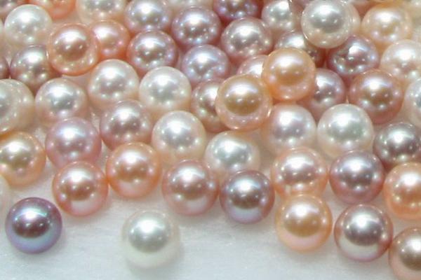 Las perlas son fabricadas naturalmente por moslucos